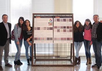Presentación del trabajo «Caracterización colorimétrica de la Roca Ornamental de Extremadura» en Intromac